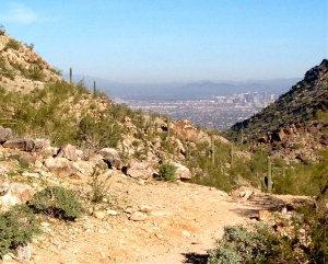 View of Downtown Phoenix from Trail